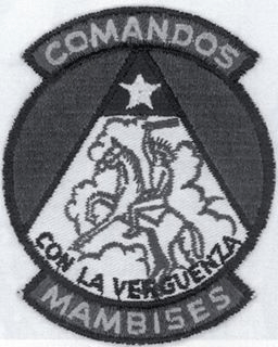 The emblem for Comandos Mambises