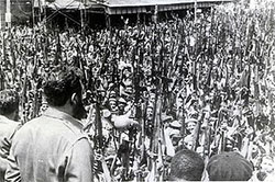 Cuba rallied against the Bay of Pigs invasion